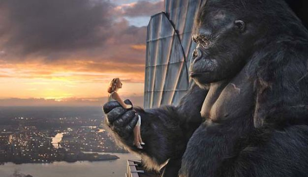 Kingkong and Ann
